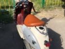 Yamaha Vino Classic 50 2003 - Мопед