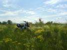Kawasaki D-Tracker 250 2002 - трактор