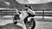 Honda CBR600RR 2004 - Ева