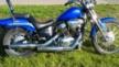 Honda VT400 Steed 1999 - Синяя птица