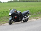 Honda CBR1100XX Super Blackbird 2003 - Дрозд