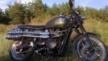 Triumph Bonneville 2011 - Скрамблер