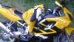 Honda CBR600F4i 2005 - Мотопед
