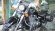 Honda VT750C Shadow 2008 - Тень