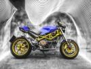 Ducati Monster 1000 2003 - Зубару