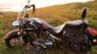 Honda VTX1300S 2004 - Череп