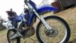 Yamaha WR250 2007 - WRF