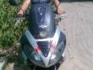 Viper XT 2010 - Сайгак