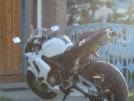 Honda CBR600RR 2004 - Бельчонок =)