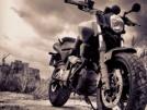 Yamaha MT-03 2008 - Конь