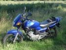 Yamaha YBR125 2011 - Маха
