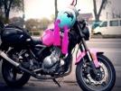 Минск C4 250 2011 - Pinky
