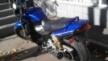 Yamaha XJR1300 2000 - Котяра