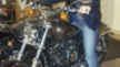 Harley-Davidson 1200 Sportster Custom 2012 - Харли