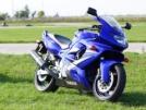 Yamaha YZF600R Thundercat 2007 - Кошка