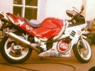 Suzuki RF600R 1994 - Лаки