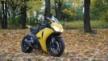 Honda CBR1000RR Fireblade 2008 - Шершень