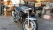 Suzuki GSF1200 Bandit 1999 - Кабанчик