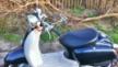 Honda Giorno Crea AF54 2001 - Ретрик