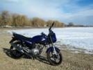 Yamaha YBR125 2011 - Ёбр
