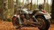 Harley-Davidson VRSCA V-Rod 2003 - Мотик