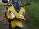 Honda CBR600F4i 2006 - Цыпа