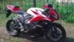 Honda CBR600RR 2009 - сибер