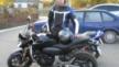 Honda CB600F Hornet 2008 - Сибишка)