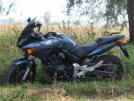 Honda CBF600 2005 - цэбээфка