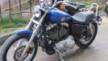 Harley-Davidson XL1200L Sportster 1200 Low 2008 - мотоцикл