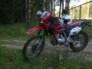 Lifan 200 GY-5 2012 - говномес