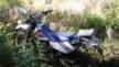 Yamaha TT250R 1995 - ттрка