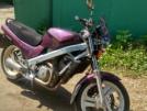 Honda NTV650 1991 - Чегевара