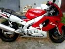 Yamaha YZF600R Thundercat 1996 - кот