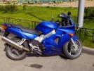 Honda VFR800i 2001 - Вервульф