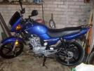 Yamaha YBR125 2012 - Букашка