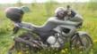 Yamaha TDM850 1994 - Daichi