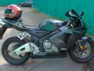 Honda CBR600RR 2005 - beast