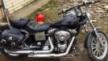 Harley-Davidson FXDL Dyna Low Rider 1999 - Бим