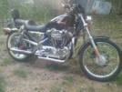 Harley-Davidson 1200 Sportster Custom 2000 - шпрот