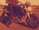 Ducati Monster 696 2011 - боливар