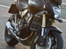 Honda CB600F Hornet 2008 - Hornet