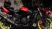 Kawasaki ZX-9R 1995 - Black Bullet