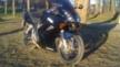 Honda VFR800 V-Tec 2002 - Малыш