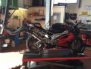 Aprilia RSV 1000 R 2006 - TIGER