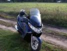 Suzuki Burgman 400 2004 - Бурый