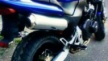 Honda CB250 1998 - Зверик