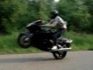 Honda CBR1100XX Super Blackbird 1999 - Блэкбёрдик