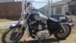 Harley-Davidson 1200 Sportster Custom 2005 - харлик