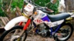 Yamaha XT225 Serow 1995 - Козлик